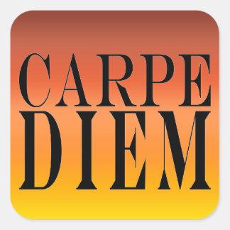 Carpe Diem Seize the Day Latin Quote Happiness Square Sticker