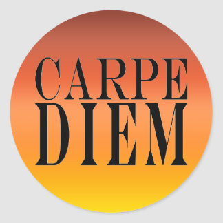 Carpe Diem Seize the Day Latin Quote Happiness Sticker