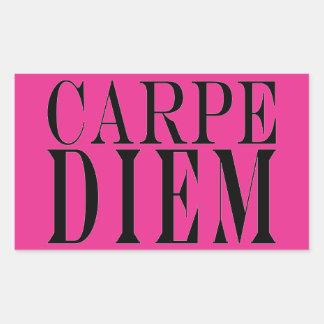 Carpe Diem Seize the Day Latin Quote Happiness Rectangular Stickers
