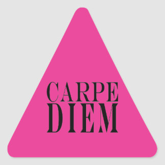 Carpe Diem Seize the Day Latin Quote Happiness Stickers