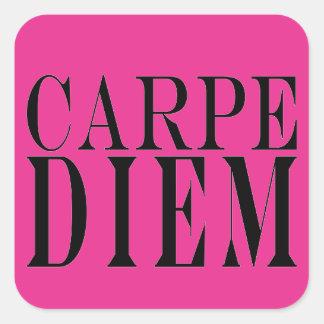 Carpe Diem Seize the Day Latin Quote Happiness Square Stickers