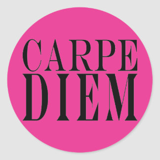 Carpe Diem Seize the Day Latin Quote Happiness Round Stickers