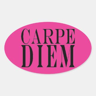 Carpe Diem Seize the Day Latin Quote Happiness Oval Sticker