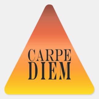 Carpe Diem Seize the Day Latin Quote Happiness Triangle Sticker