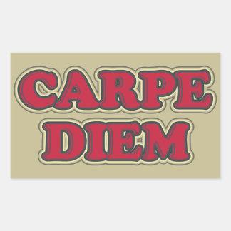 Carpe Diem (seize the day) text design slogan Rectangular Sticker