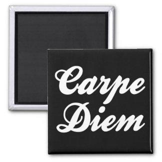 Carpe Diem Square Magnet