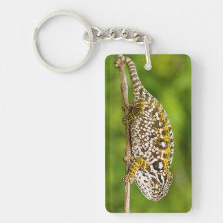 Carpet chameleon key ring