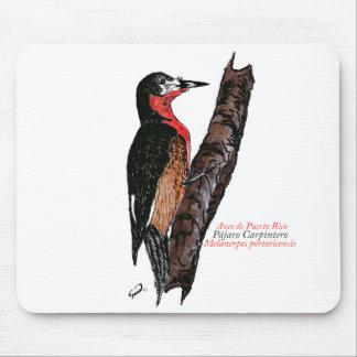 Carpintero de Puerto Rico Puerto Rican Woodpecker Mouse Pads