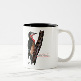 Carpintero de Puerto Rico/Puerto Rican Woodpecker Mug