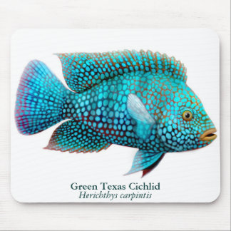 Carpintis Texas Cichlid Mousepad