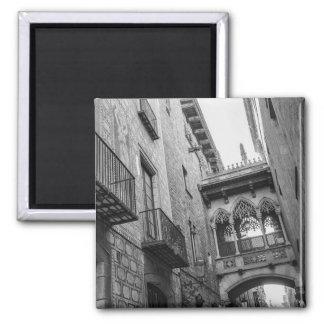 Carrer del Bisbe Magnet: Barcelona Magnet
