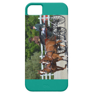 carriage driving iPhone 5 case