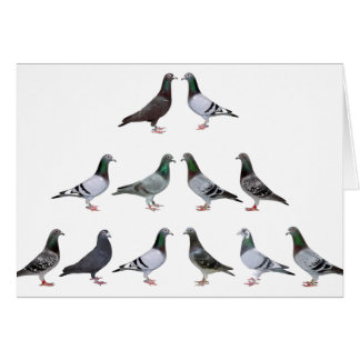 Carrier pigeons champions greeting card