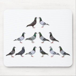 Carrier pigeons champions mouse pad
