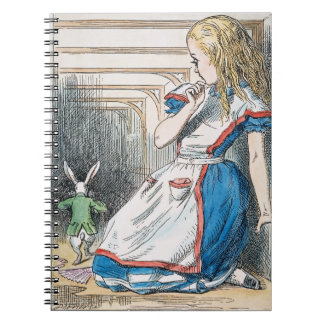 Carroll: Alice, 1865 Note Books
