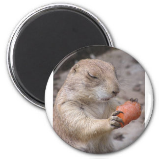 Carrot 6 Cm Round Magnet