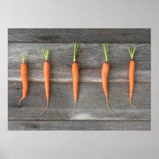 Carrot Poster