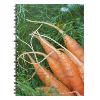 carrots in the basket note books