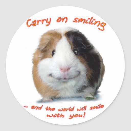 Carry on Smiling! Round Stickers