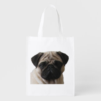 Carrying bag pug