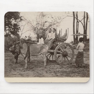 Cart pulled by two oxen at Mandalay, Burma Mouse Mat