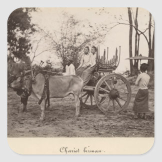 Cart pulled by two oxen at Mandalay, Burma Square Sticker