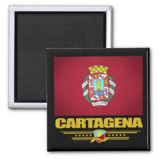 Cartagena Square Magnet