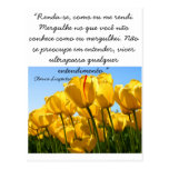 Cartão Postal- Tulipas - Clarice Lispector