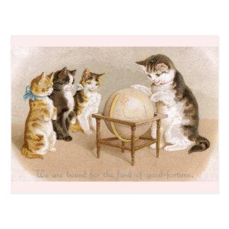 Cartographer Cat and Three Kittens Postcard