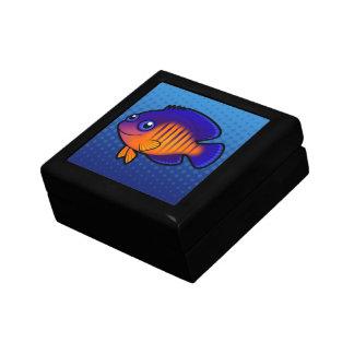 Cartoon Angelfish 1 Gift Box