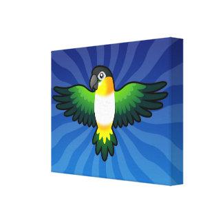 Cartoon Caique / Lovebird / Pionus / Parrot Canvas Print
