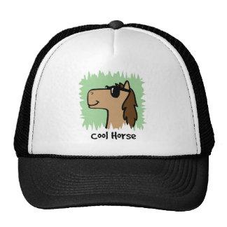 Cartoon Clip Art Cool Horse Wearing Sunglasses Trucker Hat