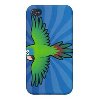 Cartoon Conure / Lorikeet / Parrot iPhone 4/4S Cover