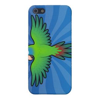 Cartoon Conure / Lorikeet / Parrot iPhone 5/5S Case