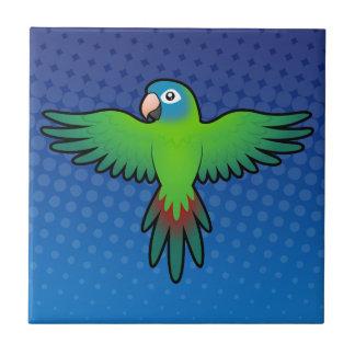Cartoon Conure / Lorikeet / Parrot Tile