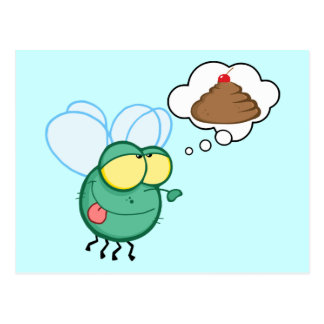 CARTOON FLY DREAMING POO CHERRY TOP FUNNY GROSS DI POSTCARD