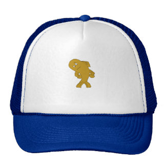 Cartoon Funny Fish Cap