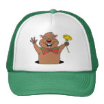 Cartoon Groundhog Cap