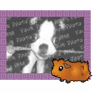 Cartoon Guinea Pig Photo Frame (scruffy) Photo Sculpture Magnet