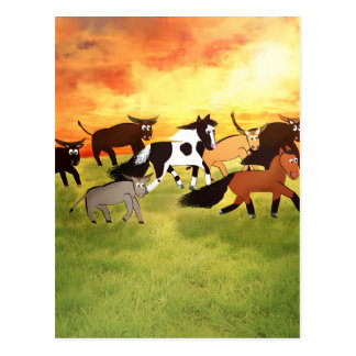 Cartoon Horses running with Bull's Postcard