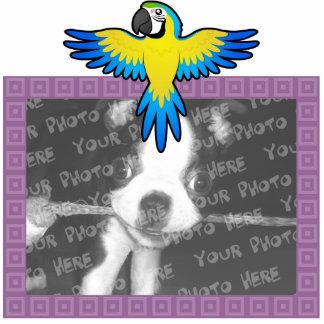 Cartoon Macaw Parrot Photo Sculptures