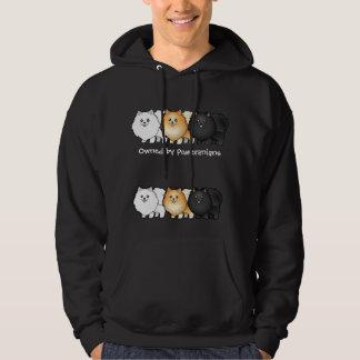 Cartoon Pomeranians Hoodie