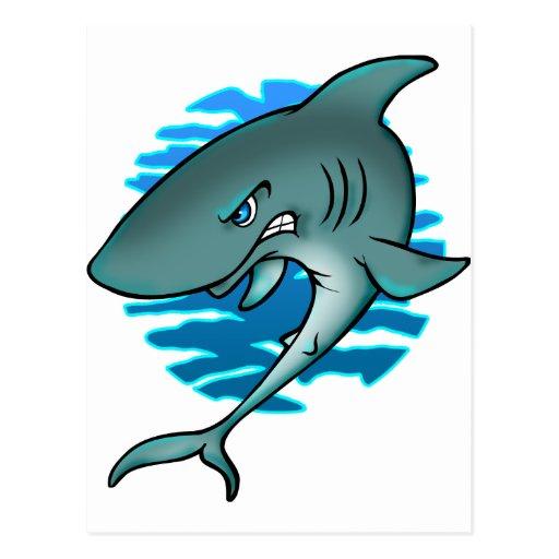 Cartoon Shark Postcards