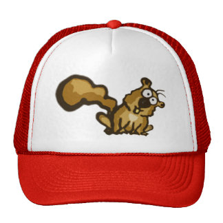 Cartoon Squirrel Hat
