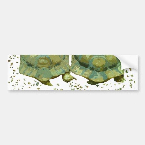 Cartoon Turtles Bumper Sticker