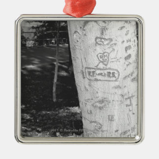 Carving on birch tree trunk B&W Christmas Ornament
