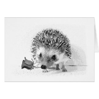 Casanova hedgehog holding rose in mouth card