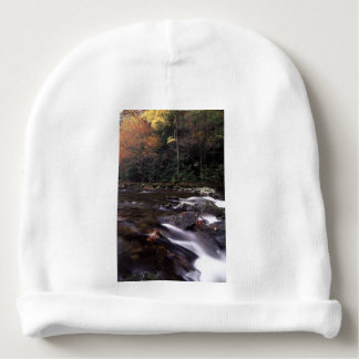 Cascade and Fall Colors Baby Beanie