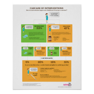 "Cascade of Interventions, 16"" x 20"" Poster"