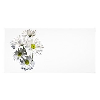 Cascade of White Daisies Personalised Photo Card